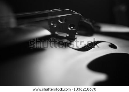 Violin , Instrument in Dark , Black and white , Music light