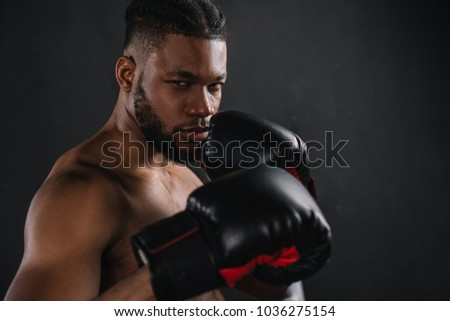 young shirtless african american boxer in boxing gloves looking at camera isolated on black  #1036275154