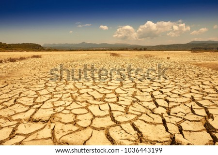 Drought land. Ground into the dry season. Drought, the ground cracks, no hot water, lack of moisture. Global worming effect. Crack soil on dry season. Abstract natural background with cracked earth. #1036443199