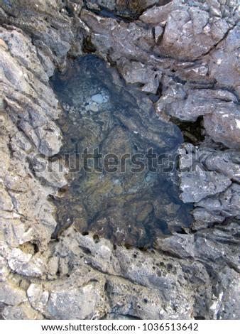 Texture of wet stone rock near seashore #1036513642