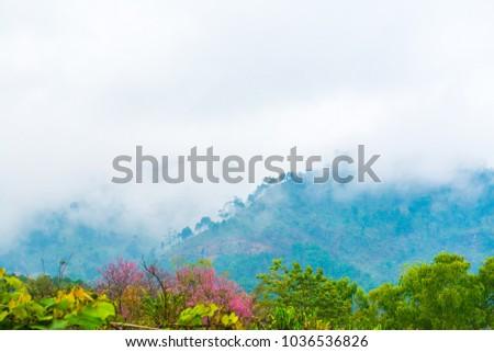 Mountain view in Thai, Thailand. #1036536826