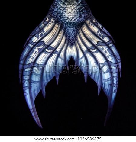 Blue Mermaid tail fluke, design detail, on black background #1036586875