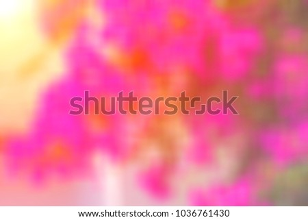 Beautiful blurred colored floral spring background #1036761430