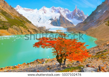 Autumn tree by the lake near Cerro Torre mountain. Los Glaciares National park. Argentina. #1037102476