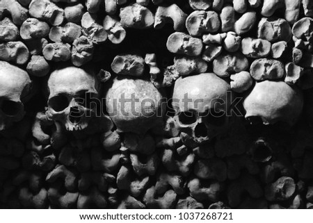 Catacombs Skulls Black And White Paris France  #1037268721