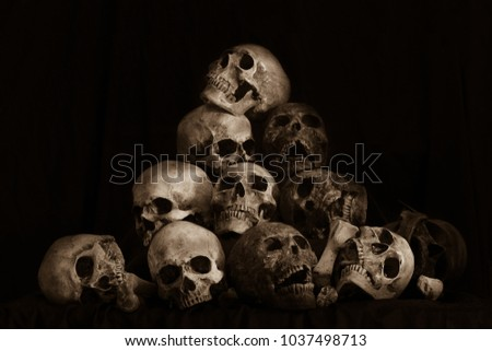 Pile of skulls and bone on dark background / Still life style
