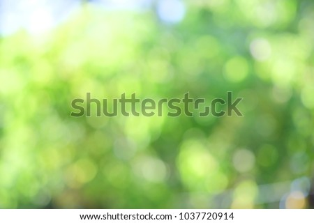 Defocus background. Royalty high quality free stock image of  bokeh leaf. Defocus of green leaf on tree. Abstract nature background and beautiful wallpaper. Soft focus light on view leaves flare