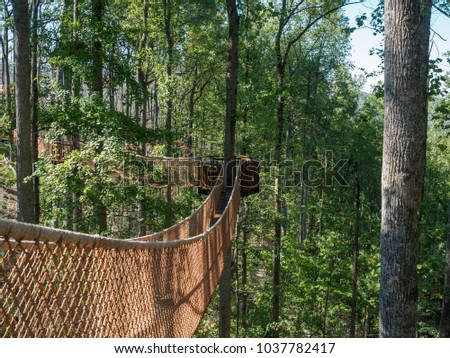 Tree canopy walkway in Anakeesta in Gatlinburg, Tennessee. #1037782417
