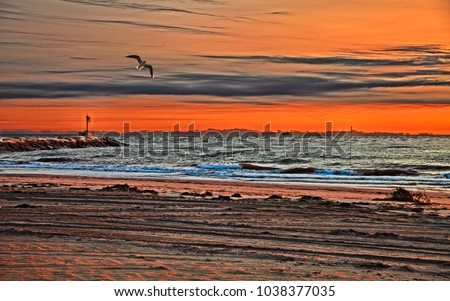 Chioggia, Venezia, Veneto, Italy: seascape at sunrise from the beach of Isola Verde - landscape of the Ariatic sea at dawn with a picturesque red sky #1038377035