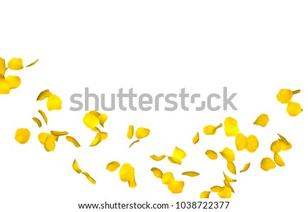 Yellow rose petals fly in a circle. The center free space for Your photos or text #1038722377