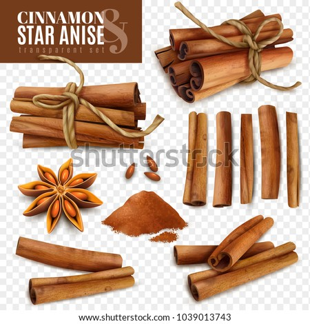 Set of cinnamon sticks with powder and star anise isolated on transparent background vector illustration Royalty-Free Stock Photo #1039013743