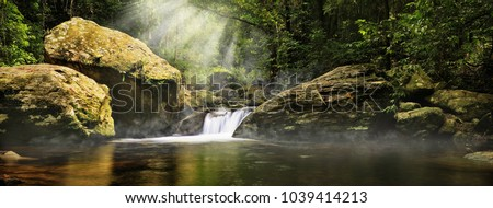 A magic morning in the jungle. Morning mist rising over the creek,  several sunbeams lighting down the tropical plants. The Stoney Creek, Kamerunga, Cairns, Far North Queensland, Australia.  #1039414213