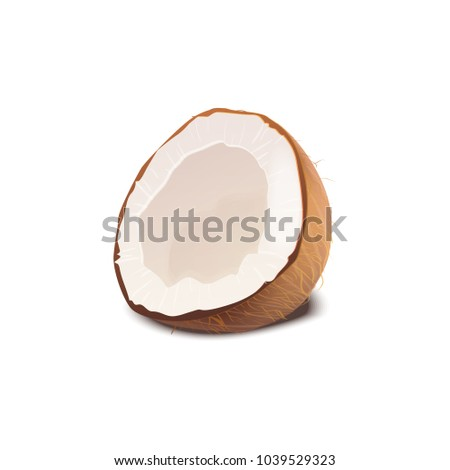 Half a coconut isolated on white background. Coco nut vector realistic illustration #1039529323
