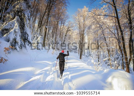 Hiker walking in the forest on the hill covered with fresh deep snow. #1039555714