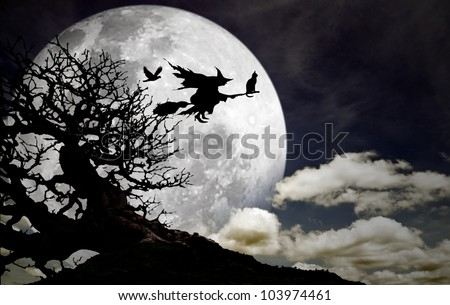 Silhouette of a witch with her cat and crow flying on a broomstick across a full moon at twilight for Halloween.