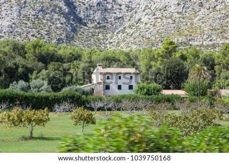 Mallorca, Balearic Islands, Spain, September 27 2015: Olive grove on the Balearic Island of Mallorca. #1039750168