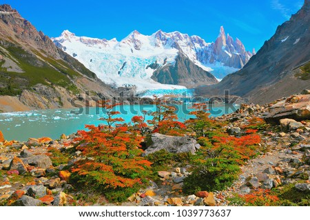Autumn small trees by the lake near Cerro Torre mountain. Los Glaciares National park. Argentina. #1039773637