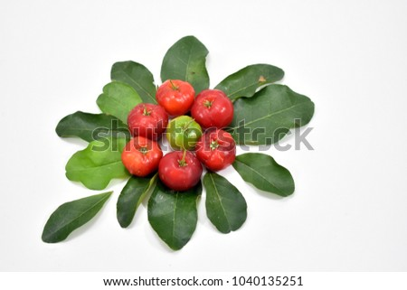 Cherry fruit and cherry leaves on a white background. #1040135251