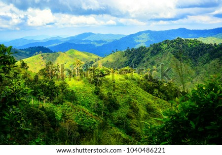 The slopes of the mountains are covered with abundant rainforest in Thailand.   #1040486221