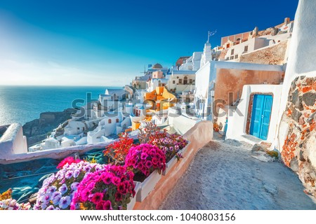 Santorini, Greece. Picturesq view of traditional cycladic Santorini houses on small street with flowers in foreground. Location: Oia village, Santorini, Greece. Vacations background. #1040803156