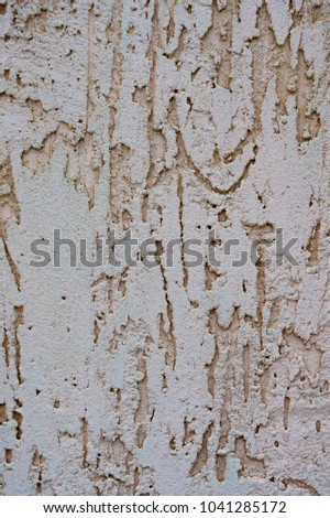 Texture of the decorative stucco wall as a background. Bark beetle style. #1041285172