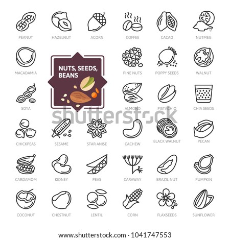 Nuts, seeds and beans elements - minimal thin line web icon set. Outline icons collection. Simple vector illustration. Royalty-Free Stock Photo #1041747553