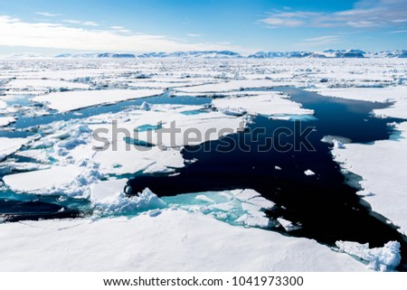 Ice landcape on the water in Arctic #1041973300