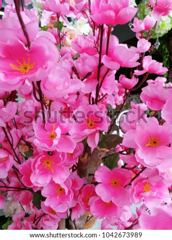 pink flower  beautiful love #1042673989