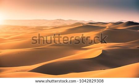 Sand dunes at gobi desert , Mongolia. #1042829308