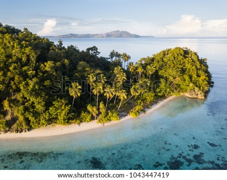 A beautiful beach and tropical island is surrounded by calm seas in the equatorial seascape of Raja Ampat, Indonesia. This unique region is best known for its vast array of marine biodiversity. #1043447419