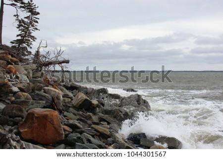 Rugged windswept Nova Scotia coastline #1044301567