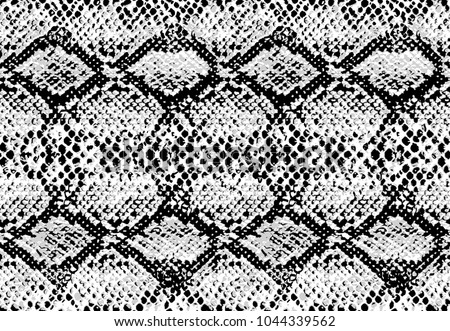 Snake skin pattern texture repeating seamless monochrome black and white. Vector. Texture snake. Fashionable print. Fashion and stylish background