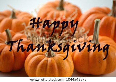 Pumpkin in a fall nest of corn and red berries. Happy Thanksgiving orange pumpkins background.