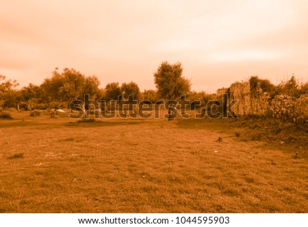 Golden view of the ruins of Side #1044595903