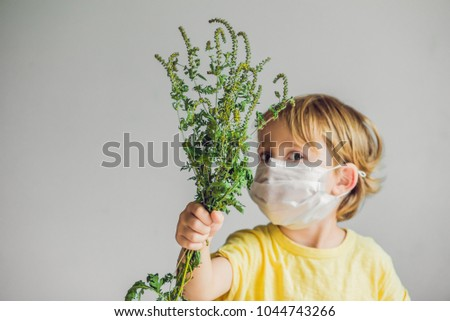 The boy is allergic to ragweed. In a medical mask, he holds a ragweed bush in his hands. Allergy to ambrosia concept. #1044743266
