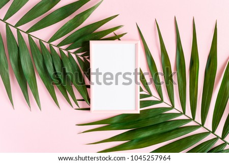 Stylish minimal composition with photo frame and green leaves on a pink pastel background. Artwork mockup with copy space #1045257964