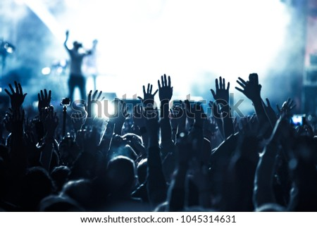 crowd having fun at live concert during music festival #1045314631