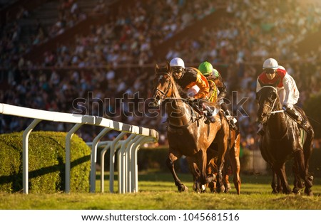 Two jockeys during horse races on his horses going towards finish line. Traditional European sport. Royalty-Free Stock Photo #1045681516