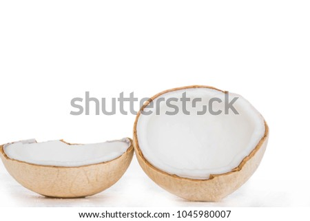 he large, oval, brown seed of a tropical palm, consisting of a hard shell lined with edible white flesh and containing a clear liquid. It grows inside a woody husk, surrounded by fiber. #1045980007