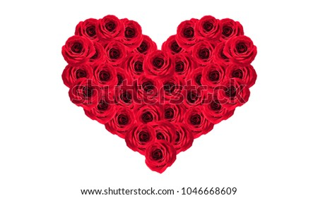 Love of red roses #1046668609
