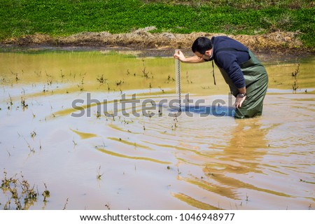 Scientist measuring  turbidity and water quality parameters in a wetland #1046948977