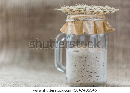 Rye natural leaven for bread in a glass jar. A living product. Spikelets. The concept of a healthy diet. Sourdough starter #1047486346