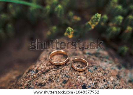 wedding rings and green foliage #1048377952