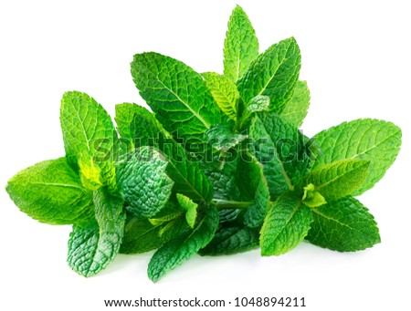 Fresh spearmint leaves isolated on the white background. Mint, peppermint close up #1048894211