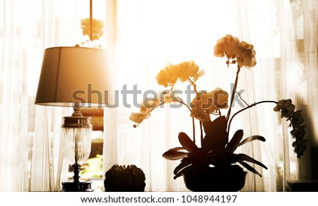 silhouette lantern and flower decoration near window in morning