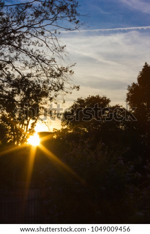 evening south Germany Sunset over Tree Covered Woods lawn Path #1049009456