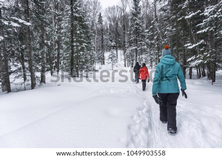 group of people walking in the forest in winter time covered with white snow and wearing colorful clothing #1049903558