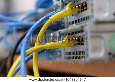 Close up ethernet cables and port connected to internet switch.Information technology computer network concept.Selective focus. #1049904647