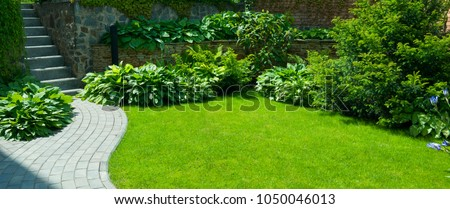 Garden stone path with grass growing up between the stones.Detail of a botanical garden. #1050046013