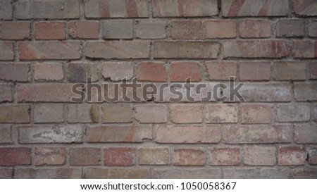 coloured bricks wall textured and plastered background #1050058367
